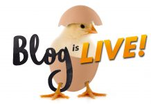 Blog Is Live!