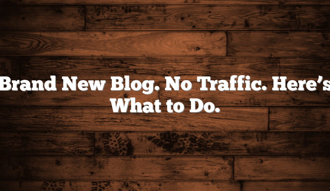 Brand New Blog. No Traffic. Here's What to Do.