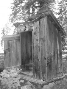 what did people use at the old outhouse before toilet paper was invented