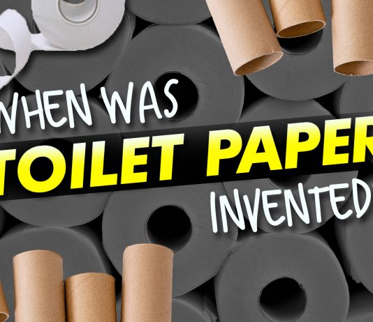 When Was Toilet Paper Invented