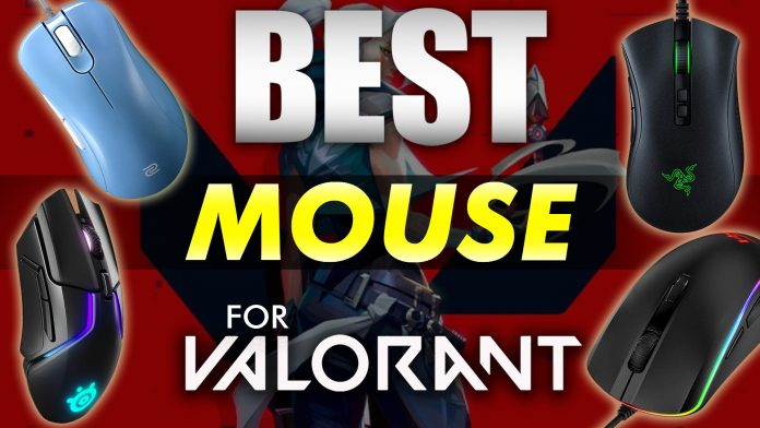 Best Mouse Options For Valorant