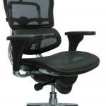 Eurotech Ergohuman High Back Swivel Chair