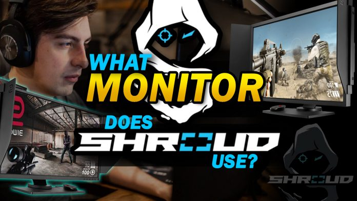 What Monitor Does Shroud Use