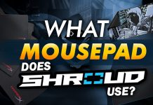 What Mousepad Does Shroud Use